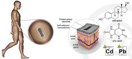 طرز کار حسگر نانو سلولز + نرم افزار تالاسمی درمان دکتر